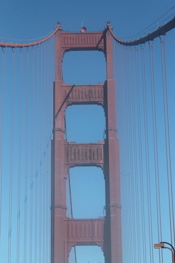 Love + Healthy Habits in San Francisco