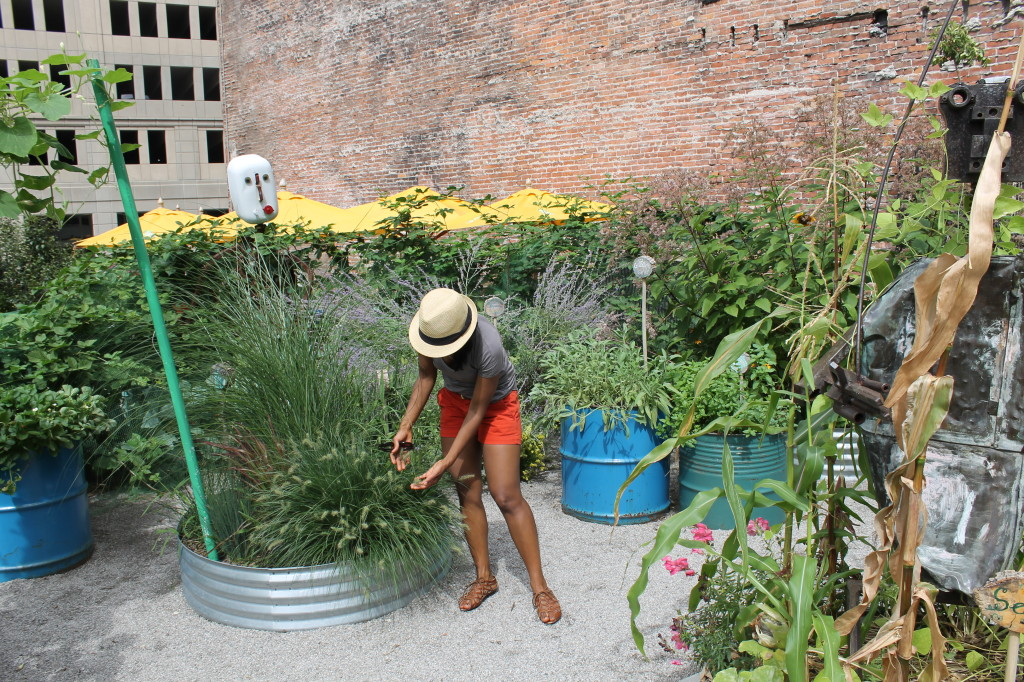 Colour me GREEN in Detroit: A tour of a garden, a farm and a market!