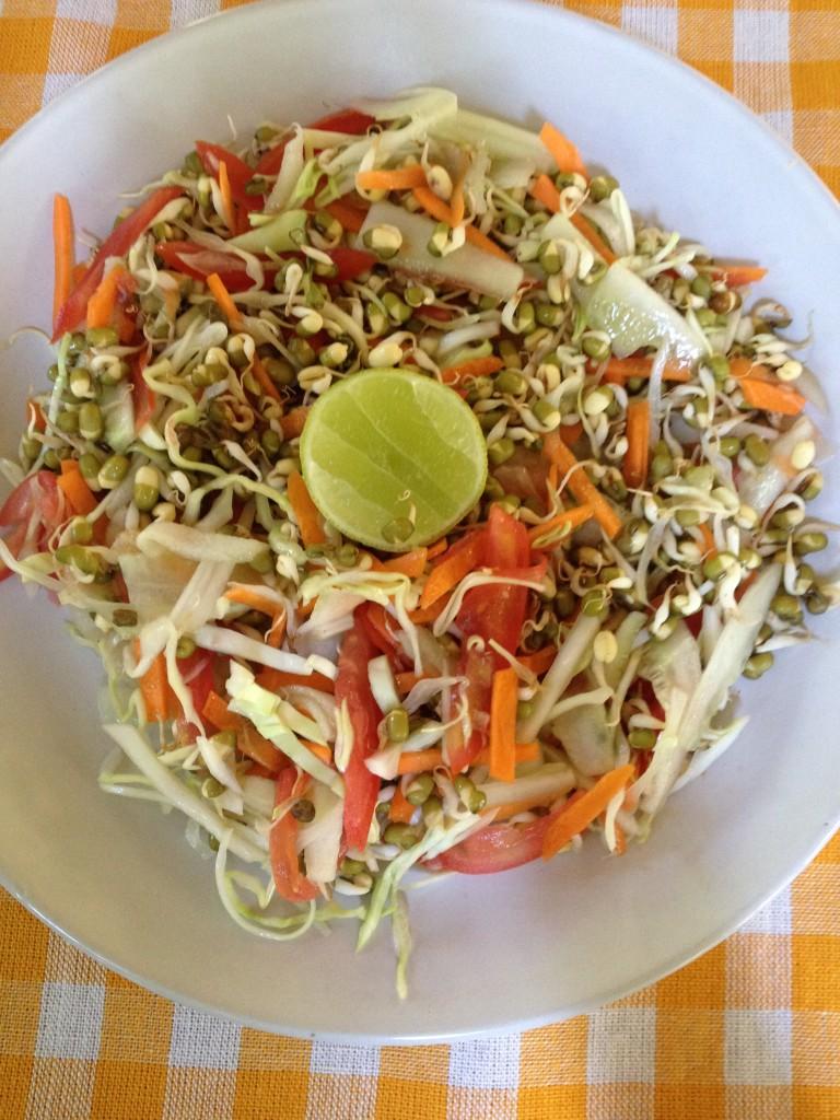 Mung Bean Sprout Salad, Palolem, Goa