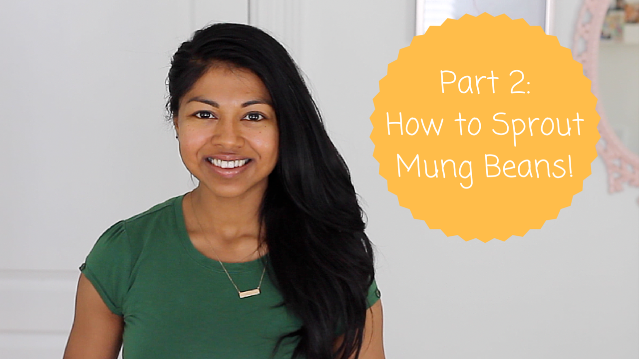 Part 2: How to Sprout Mung Beans!